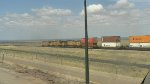 Westbound UP Stack Train