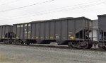 NS 146662