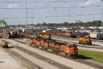 BNSF3965; BNSF5853: BNSF1848; BNSF547; BNSF2036 and others
