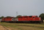 CP5946 and CP5941