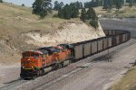 BNSF9163 and BNSF6261