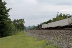 Norfolk Southern Intermodal Train