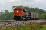 BNSF 9203 leads a empty coal train Nb at old Monroe.