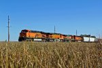 BNSF 5883 Waits with a freight train.