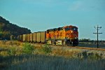 BNSF 5850 Leads a RWSX coal train.