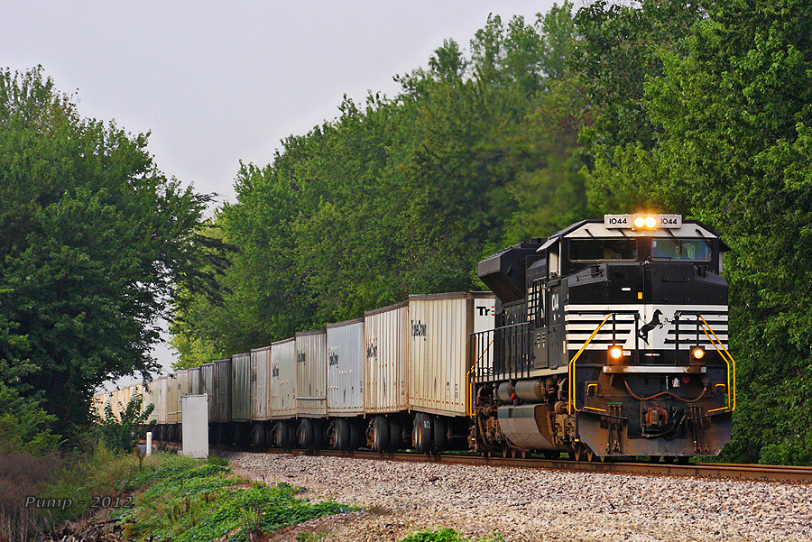 Northbound NS Intermodal Train