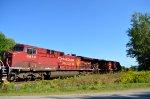 CP 8655