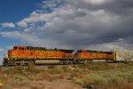 BNSF 5206 West