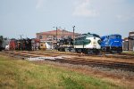 NS 8098 and others