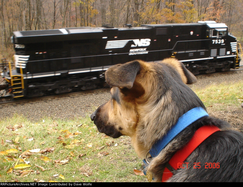 King of trains