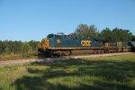CSX Stack Train