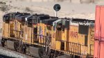 WB Stack train @ Apex Summit NV