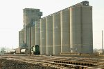North Pacific Grain Growers
