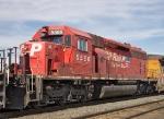 CP 5566