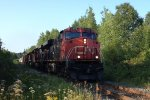 CN 2249 Leading the 305 West