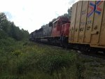 CN 5450 on the 305 West