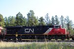CN 2236