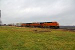BNSF 7228 Heads Eb with a stack train.