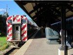 Metra Electric Train at Homewood
