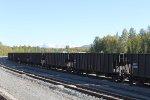 Alaska Railroad hoppers