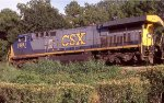 CSX 628 plowing through the summer weeds!