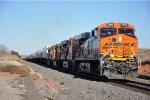 Z train races west
