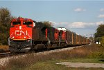 CN 8943 leads a westbound in the late afternoon sun