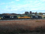 NS 6591 leads NS 135