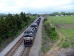 NS 8946 on 37Q through Coulter