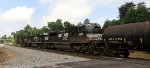 NS train #M53 (Manifest) (Linwood, NC - Birmingham, AL) (pic 2)