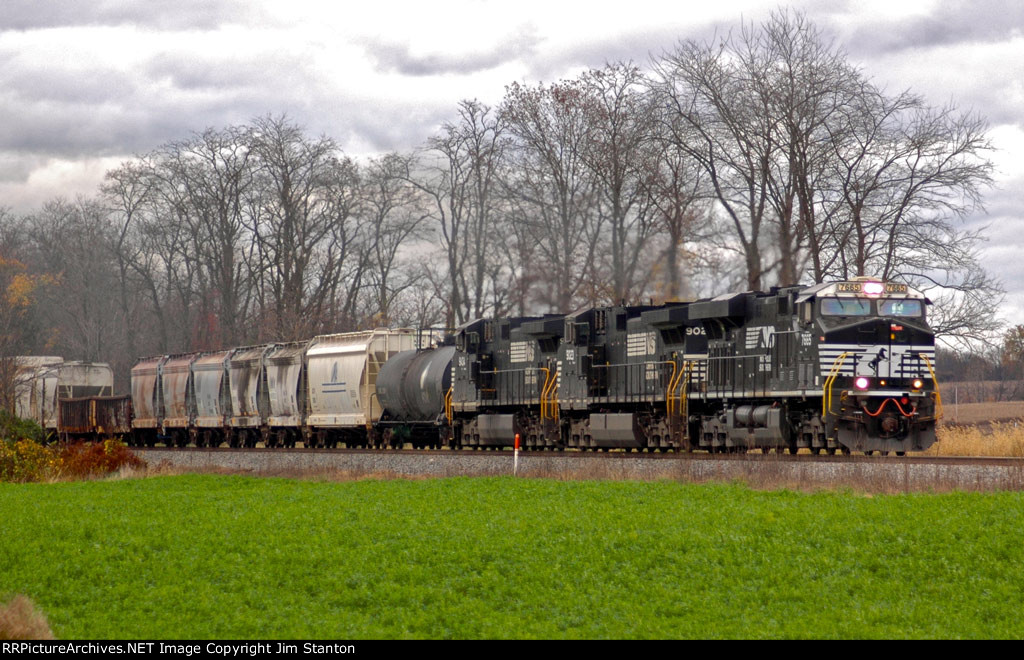 NS 7665 leads NS 11R