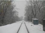 Winter in Wilson