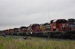 CP 5415