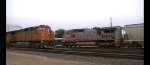 BNSF 868 meets BNSF 5036, 4521 W, Oregon, Ill,  8.24.2013