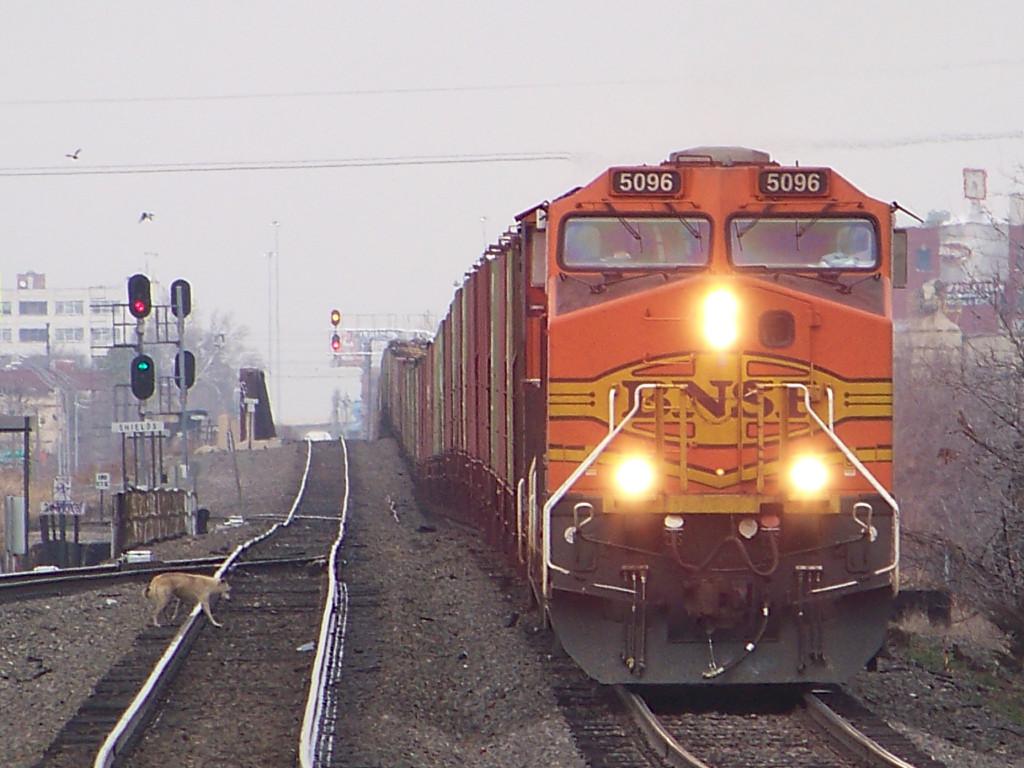 BNSF C44-9W 5096