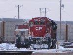 CP 6255