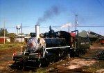 Crab Orchard & Egyptian 2-4-2 #5