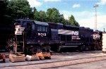 NS 5019