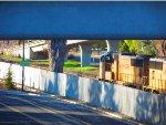 SD70M 4432 leads a Rail Train Past Blossom Hill