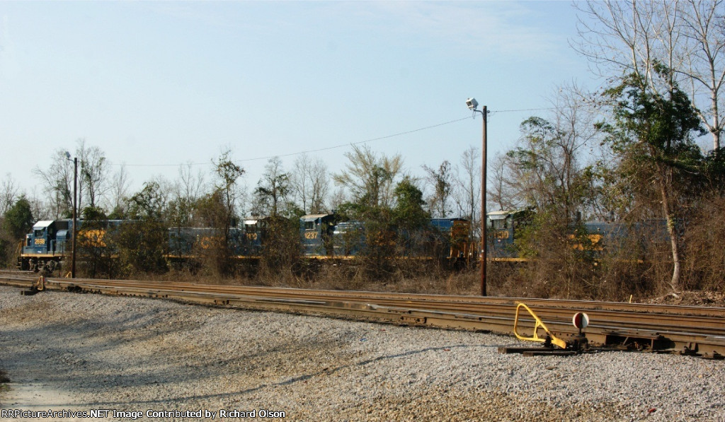 CSX behind the trees