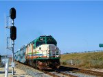 TRCX 802 Florida Tri-Rail Train P631