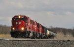 CP 6236 Leading K635