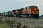 BNSF 4451 Heads a SB freight train