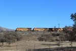 BNSF Coil Train on Tehachapi Loop