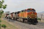 BNSF Z-Train at Bealville
