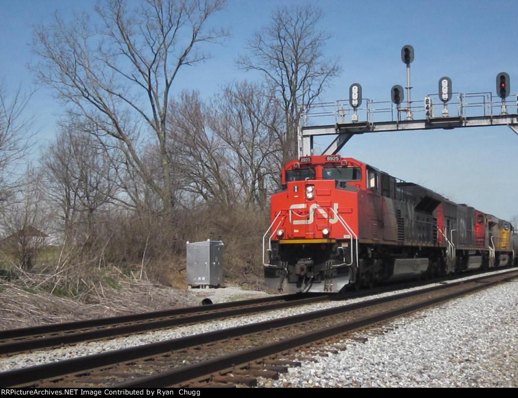 CN 8925