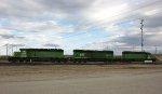 BN Green SDs