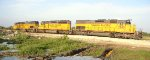 Rock Train Unloading