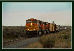 BNSF 5437 East on UP's Nampa Sub