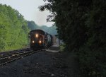 CN 5629
